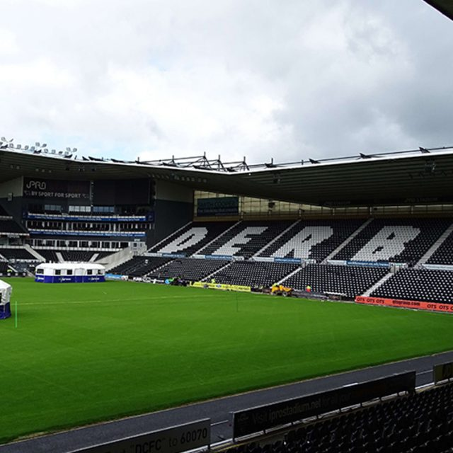 SISGrass. Hybrid pitch, grass, reinforced grass, hybrid technology, Derby County iPro Stadium