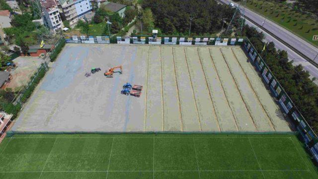 Şükrü Saracoğlu Stadium, SISGrass, Hybrid grass, football pitch