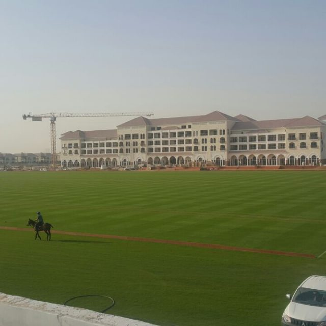 Habtoor Polo Pitch in Dubai, natural turf pitch, sis pitches,