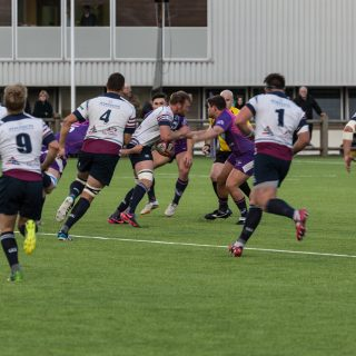 Loughborough University, sis pitches, synthetic turf, artificial pitch, rugby pitch