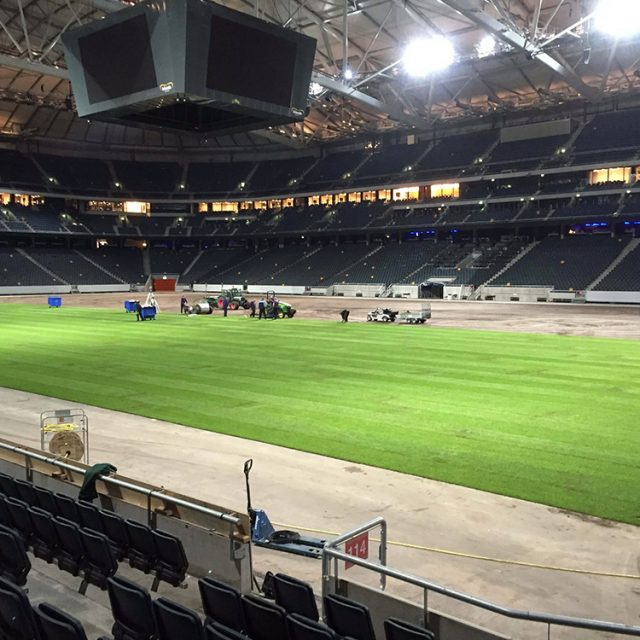 Friends Arena, Natural turf, pitch, grass, sports