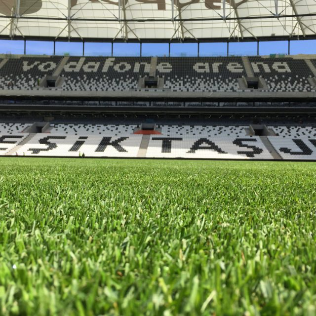 SISGrass pitch, reinforced natural turf, BESIKTAS VODAFONE ARENA IN ISTANBUL, bonar yarns