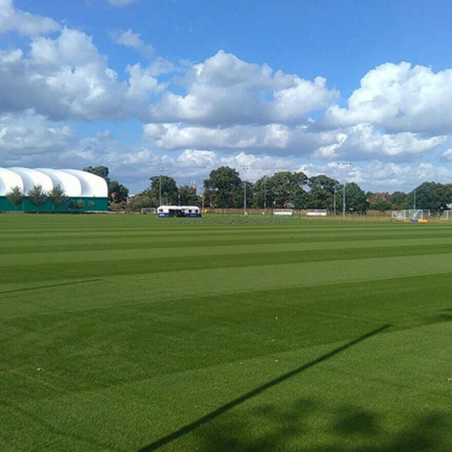 SISGrass, Hybrid pitch, grass, reinforced grass, hybrid technology, Fulham FC Training Ground
