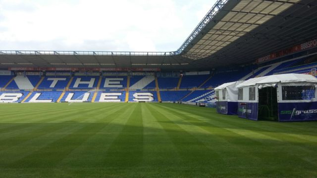 Birmingham, hybrid, pitch turf, artificial grass, revolutionary pitch, FIFA World Cup, SISGrass, Stadium