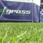 Birmingham, hybrid, pitch turf, artificial grass, revolutionary pitch, FIFA World Cup, SISGrass
