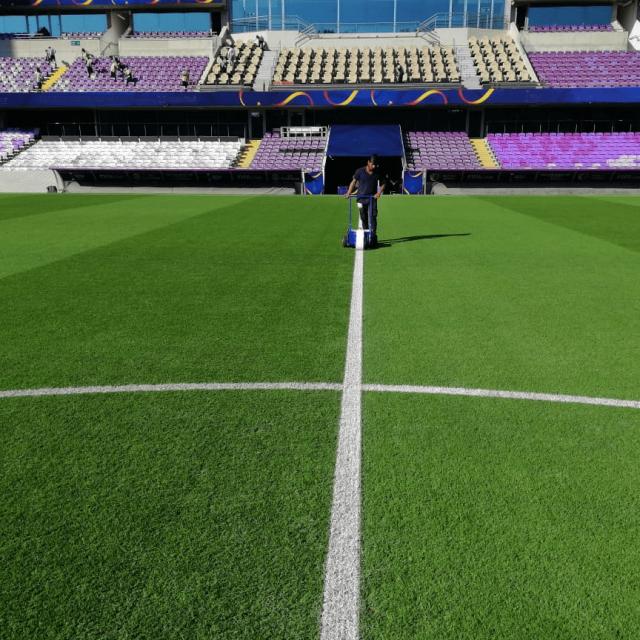 SISGrass hybrid grass UAE Asian Cup 2019