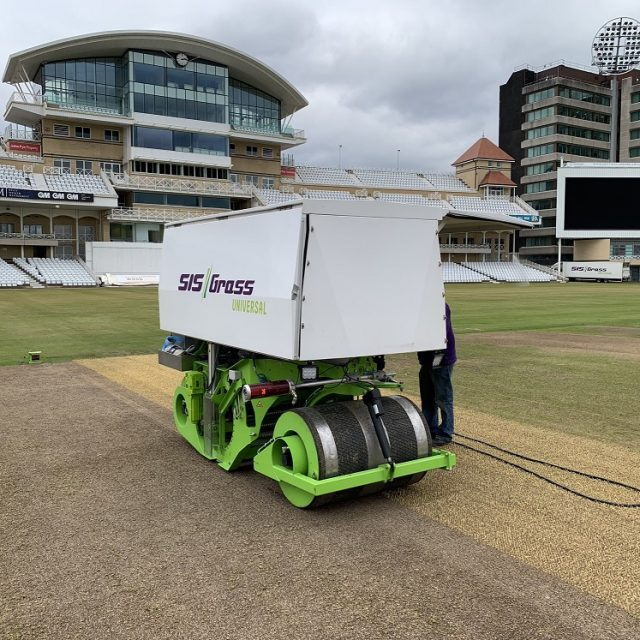 cricket hybrid grass turf