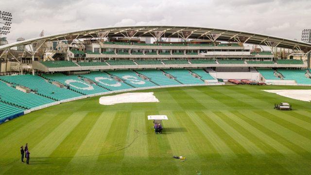 hybrid cricket pitch